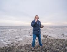 Zeewierkaas van Vlieland